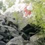 Kivi edestä 14.7. Tuukka Kaila